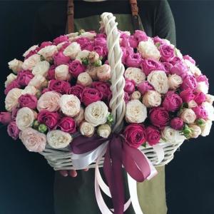 51 пионовидная роза микс R959