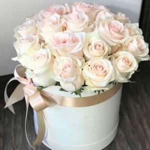 19 нежных роз с оформлением R1210