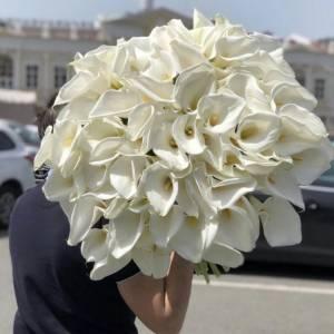 101 крупная белая калла с оформлением R744