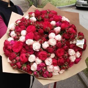 101 ветка пионовидных роз в крафте R874
