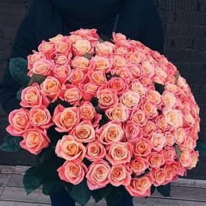 Букет 101 персиковая роза с лентами R877