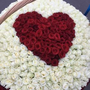 501 роза в корзине с красным сердцем R927
