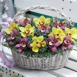 Корзина 25 желтых и розовых орхидей R949