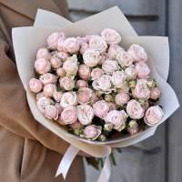 15 веток пионовидной розы в крафте R531